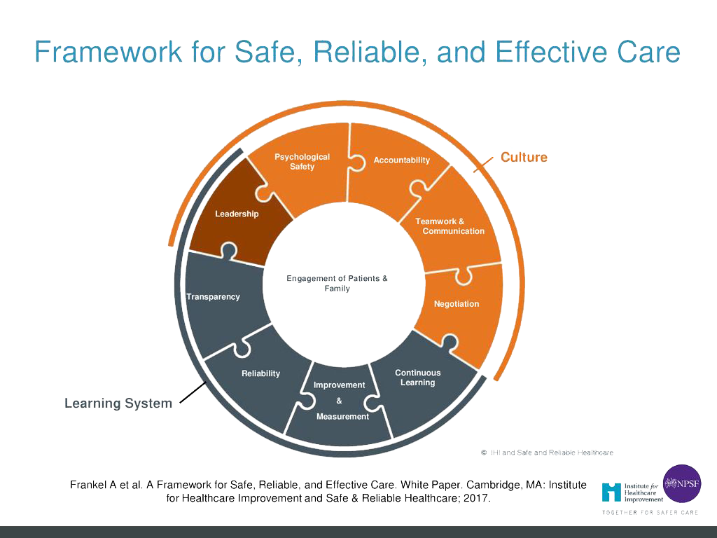 Framework-for-safe-reliable-and-effective-care